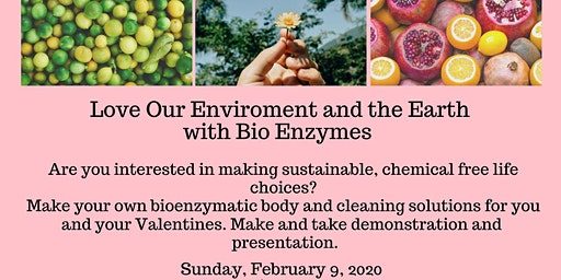 Love Our Environment and the Earth with Bio Enzymes