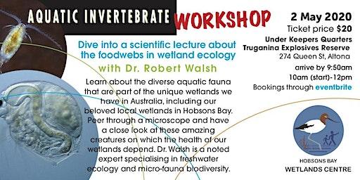 Aquatic invertebrate workshop with Dr. Robert Walsh