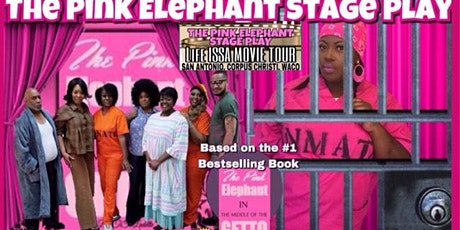 The Pink Elephant Stage Play SATX tickets