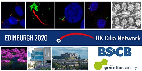 2020 BSCB GenSoc UK Cilia Spring Meeting Online! tickets