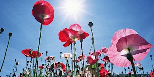 Vortragsreihe Ayurvedische Jahreszeiten: Grisna - Früher Sommer