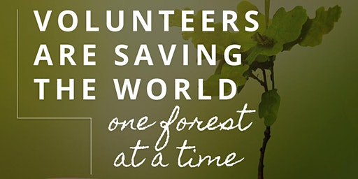 Team Naturespace – Volunteer in a Forest