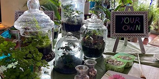 Terrarium and Tea Workshop