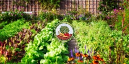 MB: Gardening