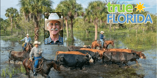 Florida Cattle Ranching: 5 Centuries of Tradition