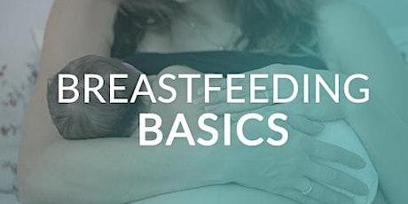 Breastfeeding  Basics - Arlington tickets