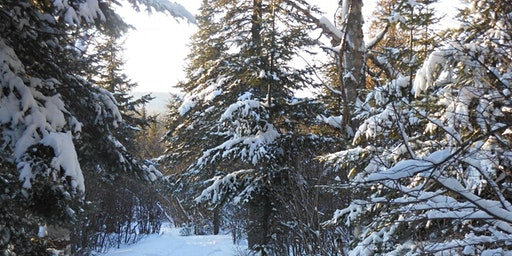 Winter Hike at Cascade River