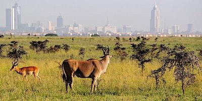 Nairobi National Park Tour Plus Elephant & Giraffe Centers