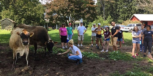 Lancaster Farm Sanctuary Tour