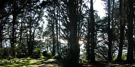 Golden Gate Heights Park Volunteer Workparty tickets