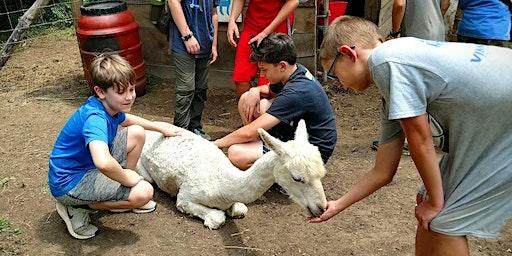 Sunday, May 17th, 2020 Alpaca Farm Visit