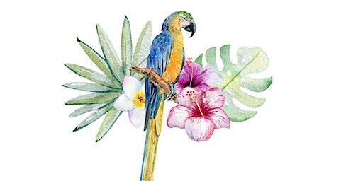 Perfect Parrot - Northies Cronulla Hotel