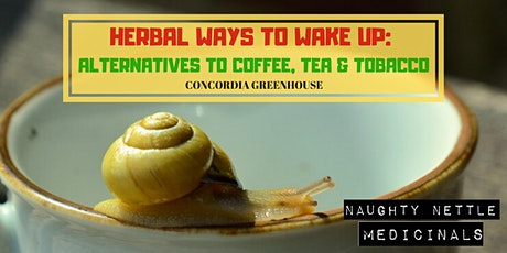 Herbal Ways to Wake Up: Alternatives to Coffee, Tea & Tobacco tickets