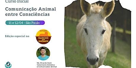 Curso Inicial Comunicação Animal no Santuário Rancho dos Gnomos - SP - adiado ingressos
