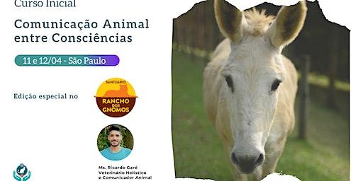 Curso Inicial Comunicação Animal no Santuário Rancho dos Gnomos - SP - 11 e 12 de abril