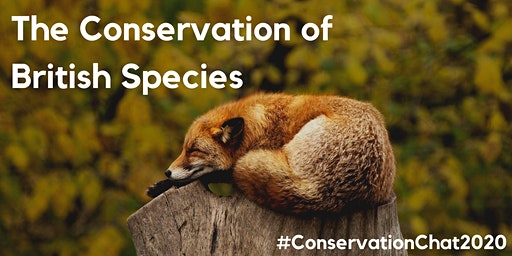 Conservation Chat 2020