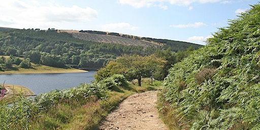 Cheshire Scouts Hillwalking Day - Goyt Valley