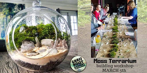 Moss Terrarium Workshop in Lakewood!