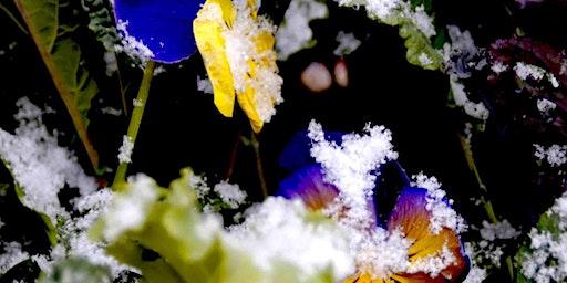 Garden On! - Jumpstart the Season
