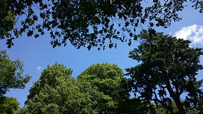 Wander for Well-being at Killerton tickets