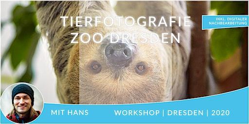 Fotografie Workshop Tierfotografie im Zoo Dresden