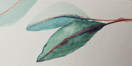 Watercolour for Beginners - Eucalypt leaves tickets