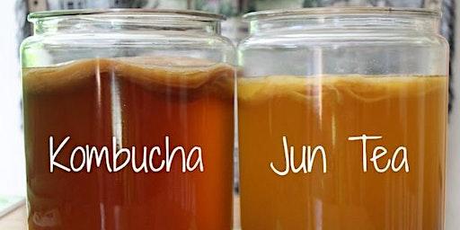 Brewing Kombucha and Jun Tea