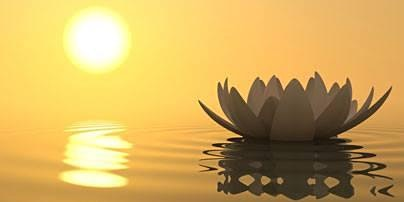 Mindfulness Immersed in the Body – An Embodied Awakening Retreat