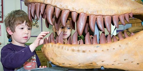 Dinosaurs and fossils with the Melbourne Museum - Sam Merrifield tickets