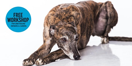 Pet Prep - Resilient Greyhounds at Addi Road Community Centre tickets