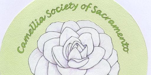 2020 Camellia Show