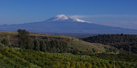 Wine Tasting : Barbaresco vs Nerello Mascalese - top reds from Italy tickets