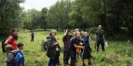 East Devon Heathweek's: Venn Ottery Nature Reserve Open Day 2020