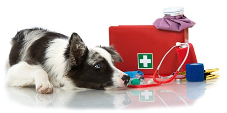 First Aid for Canine Professionals tickets