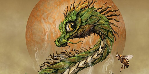 Cirencester Library - Dragon Stories