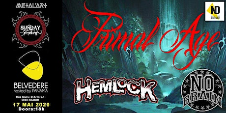 Primal Age I Hemlock I No Brain billets