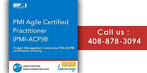 PMI-ACP (PMI Agile Certified Practitioner) Training in Boston