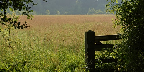 Guided Walks at Nature Reserve tickets