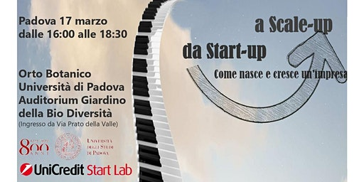 DA START-UP A SCALE UP: COME NASCE E CRESCE UN'IMPRESA