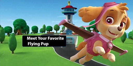 Meet Your Favorite Flying Pup!