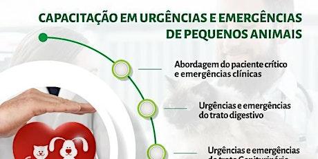 Urgências e Emergências de Pequenos Animais 14 edição ingressos
