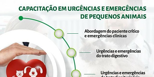 Urgências e Emergências de Pequenos Animais 14 edição