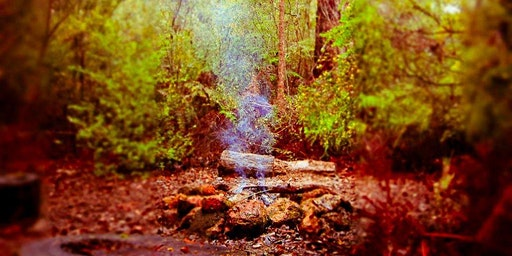 Bealtaine Beauty - Igniting Your Creative Fire