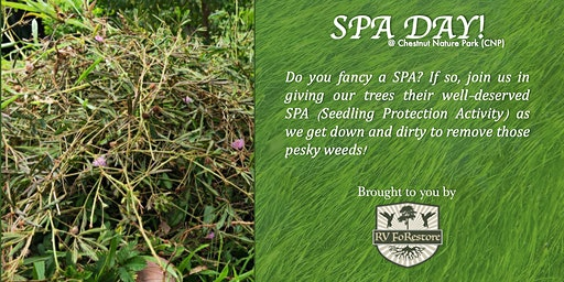 SPA Day! Seedling Protection Activity @Chestnut Nature Park