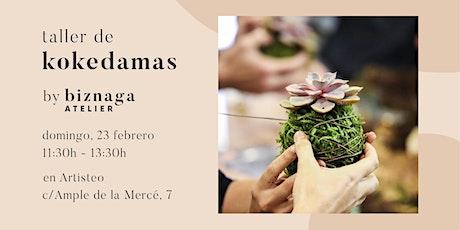 Crea tu Kokedama de Echeveria con Biznaga Atelier - colabora Artisteo. tickets