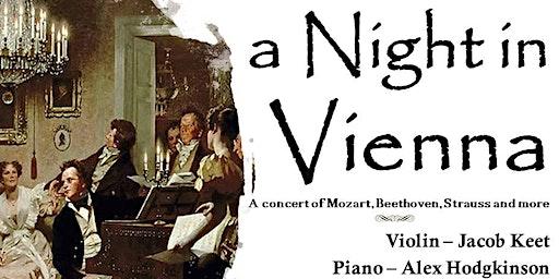 A Night in Vienna Concert