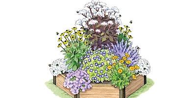 Bee/Butterfly Planter Workshop