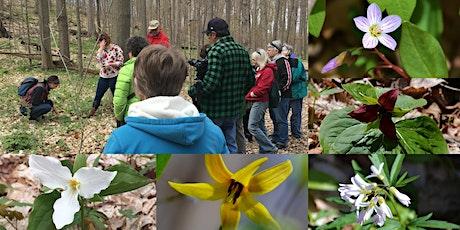 2020 Spring Wildflower Walk tickets