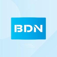 BDN Global logo