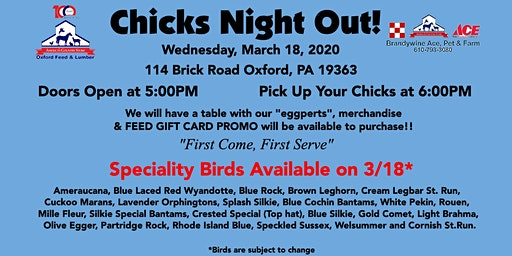 Chicks Night Out!